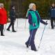 Обучение пожилых людей теоретическим и практическим навыкам скандинавской ходьбы будут проводить профессионалы