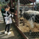 Экскурсия в Иркутский зоосад